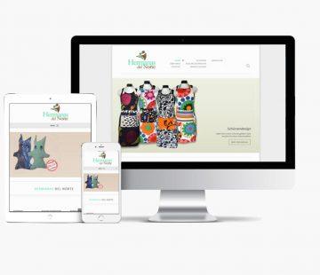 Website Hermanas del Norte con Whyaweb. Agencia de diseño Web